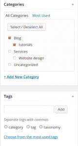 Category and Tag fields in WordPress