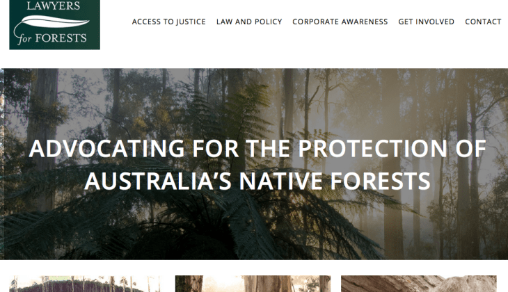 Environmental Legal Advocacy website design
